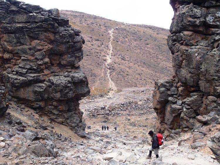 Kilimanjaro. Descenso desde Lava Tower