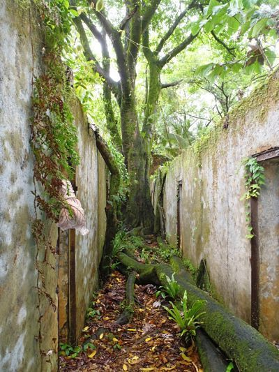 Guayana francesa. Ruinas penitenciarias