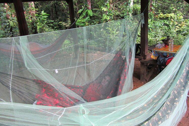 Sobrevivir en la selva. La hamaca para dormir.