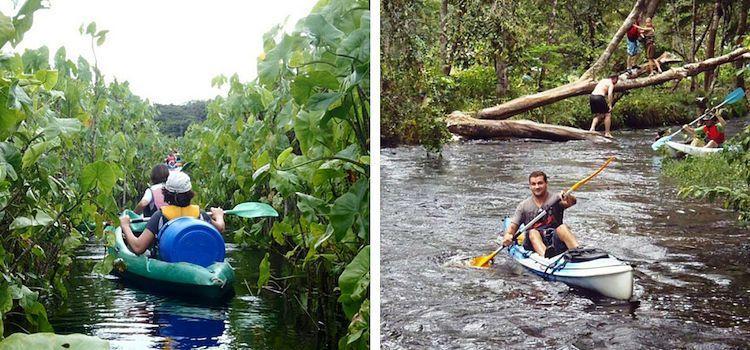 Guayana francesa lugares. Kayakeando
