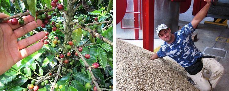 Café en Manizales