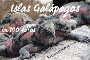 islas galápagos en 100 fotos
