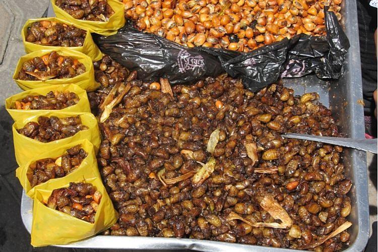 Típicos snacks de Ecuador